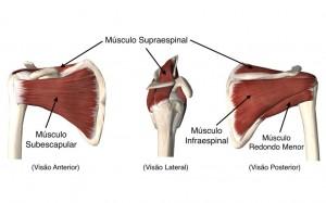 ortopedista-curitiba-ombro-dor-no-ombro-5B-1024x640
